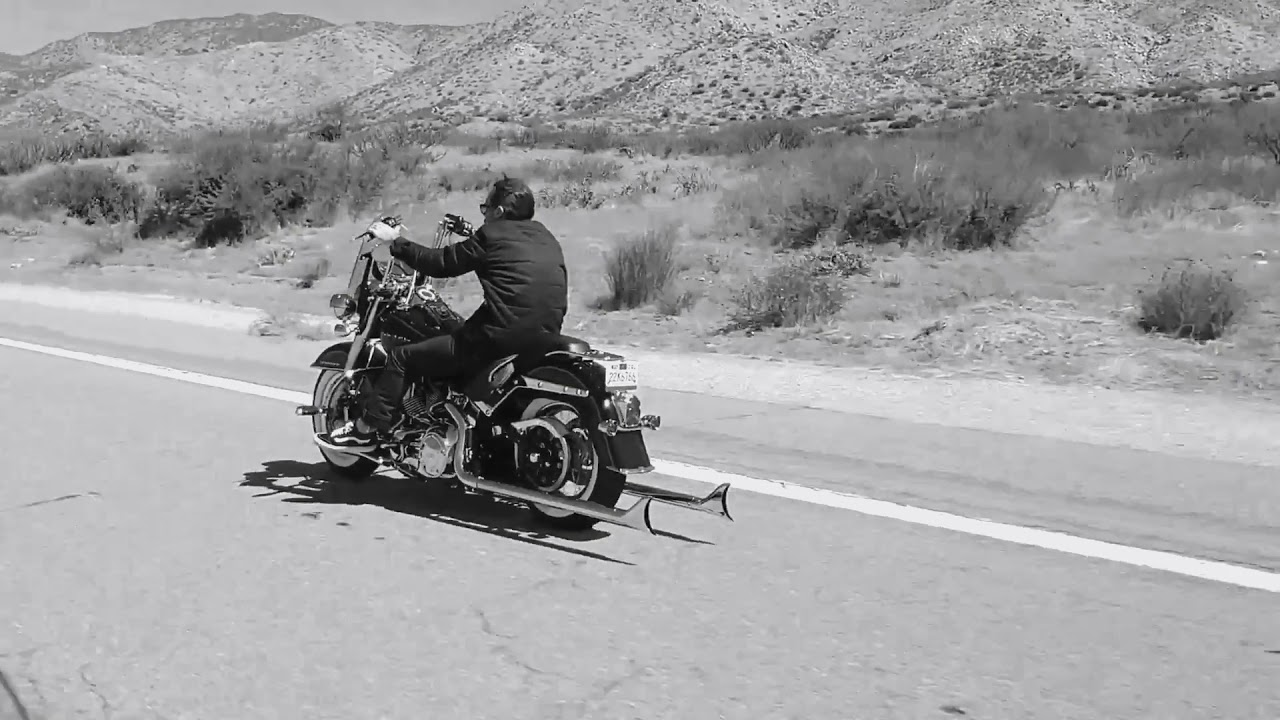 Harley-Davidson | Weekend Fun