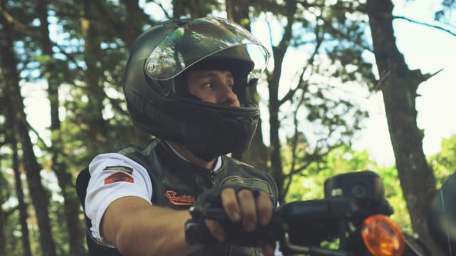 Harley Davidson - Legacy